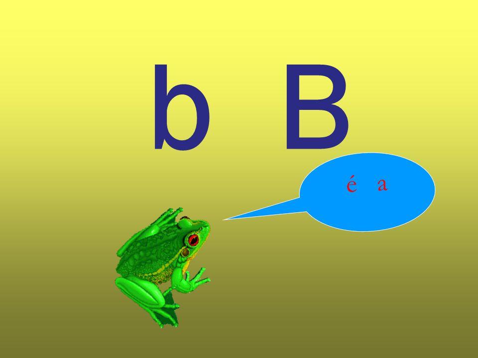 b B é a