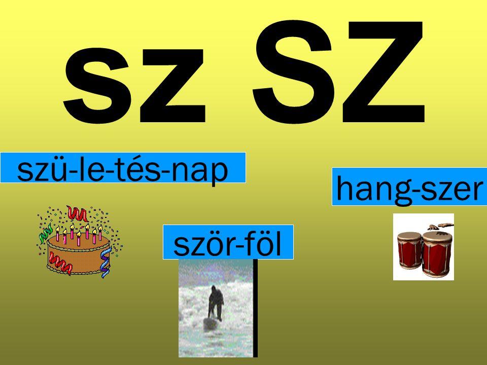 sz SZ