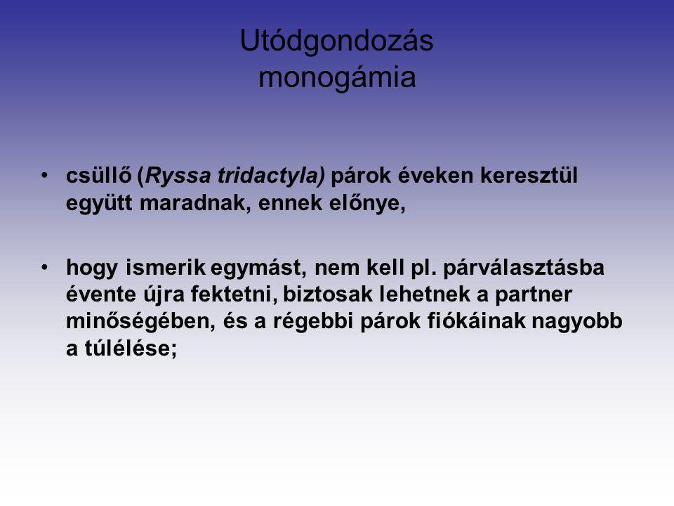 Utódgondozás monogámia csüllő (Ryssa tridactyla) párok éveken keresztül együtt maradnak, ennek előnye, hogy ismerik egymást, nem kell pl.