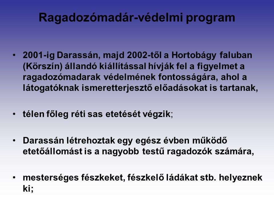 Ragadozómadár-védelmi program 2001-ig Darassán, majd 2002-től a Hortobágy faluban (Körszín) állandó kiállítással hívják fel a figyelmet a ragadozómadarak védelmének fontosságára, ahol a látogatóknak ismeretterjesztő előadásokat is tartanak, télen főleg réti sas etetését végzik; Darassán létrehoztak egy egész évben működő etetőállomást is a nagyobb testű ragadozók számára, mesterséges fészkeket, fészkelő ládákat stb.