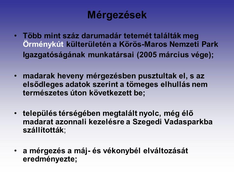 Mérgezések Több mint száz darumadár tetemét találták meg Örménykút külterületén a Körös-Maros Nemzeti Park Igazgatóságának munkatársai (2005 március vége); madarak heveny mérgezésben pusztultak el, s az elsődleges adatok szerint a tömeges elhullás nem természetes úton következett be; település térségében megtalált nyolc, még élő madarat azonnali kezelésre a Szegedi Vadasparkba szállították; a mérgezés a máj- és vékonybél elváltozását eredményezte;