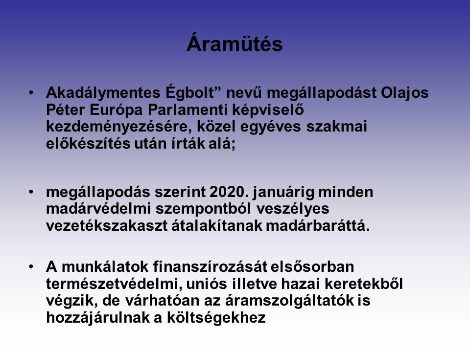 Áramütés Akadálymentes Égbolt nevű megállapodást Olajos Péter Európa Parlamenti képviselő kezdeményezésére, közel egyéves szakmai előkészítés után írták alá; megállapodás szerint 2020.
