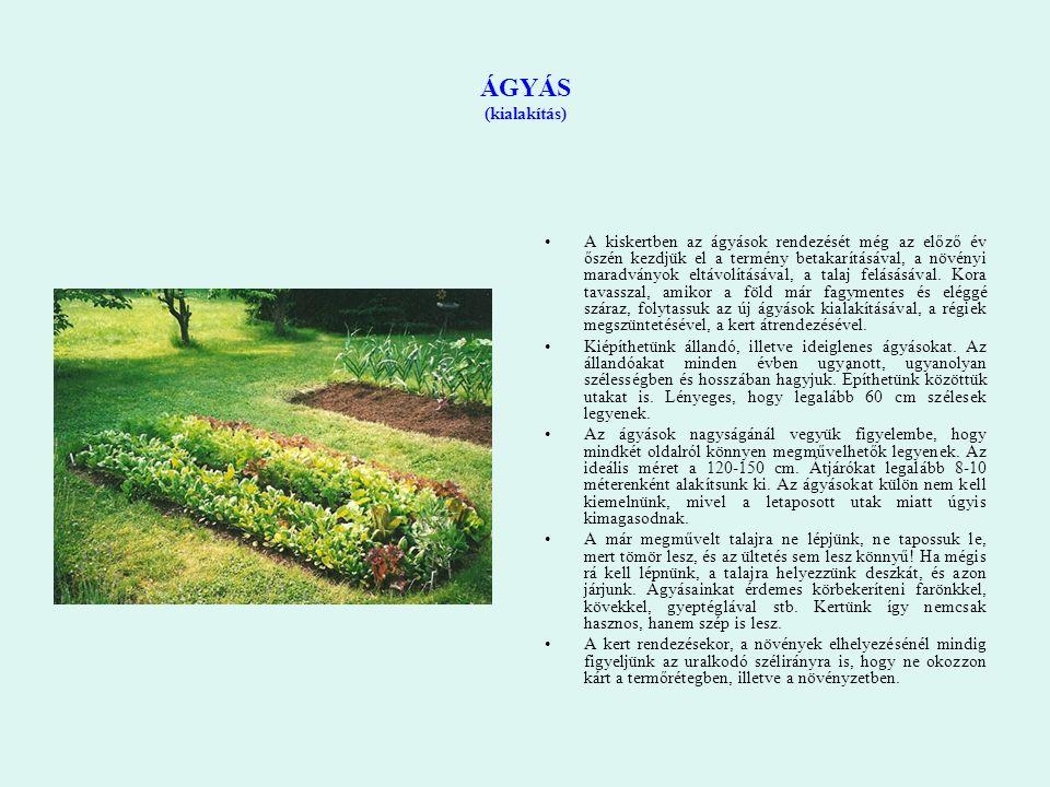 ÁGYÁS (kialakítás) A kiskertben az ágyások rendezését még az előző év őszén kezdjük el a termény betakarításával, a növényi maradványok eltávolításáva