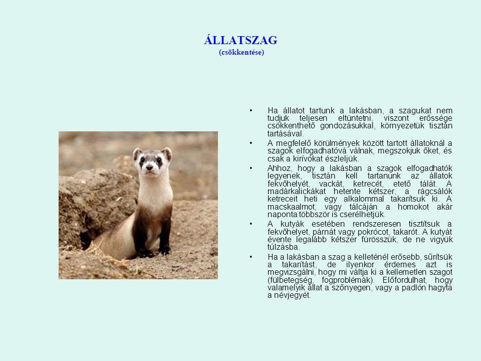 ÁLLATSZAG (csökkentése) Ha állatot tartunk a lakásban, a szagukat nem tudjuk teljesen eltüntetni, viszont erőssége csökkenthető gondozásukkal, környezetük tisztán tartásával.