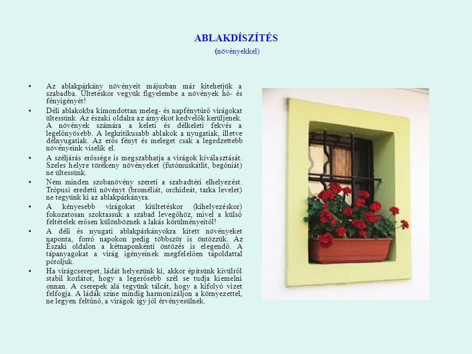 ABLAKDÍSZÍTÉS (növényekkel) Az ablakpárkány növényeit májusban már kitehetjük a szabadba. Ültetéskor vegyük figyelembe a növények hő- és fényigényét!