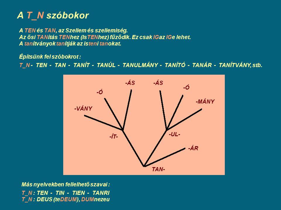 A T_N szóbokor A TEN és TAN, az Szellem és szellemiség. Az ősi TANítás TENhez (IsTENhez) fűződik. Ez csak IGaz IGe lehet. A tanítványok tanítják az is
