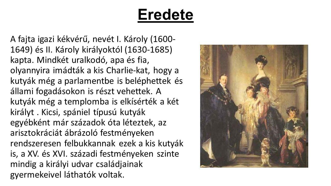 Eredete A fajta igazi kékvérű, nevét I. Károly (1600- 1649) és II. Károly királyoktól (1630-1685) kapta. Mindkét uralkodó, apa és fia, olyannyira imád