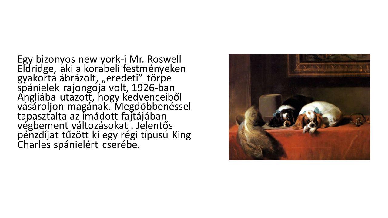 """Egy bizonyos new york-i Mr. Roswell Eldridge, aki a korabeli festményeken gyakorta ábrázolt, """"eredeti"""" törpe spánielek rajongója volt, 1926-ban Angliá"""