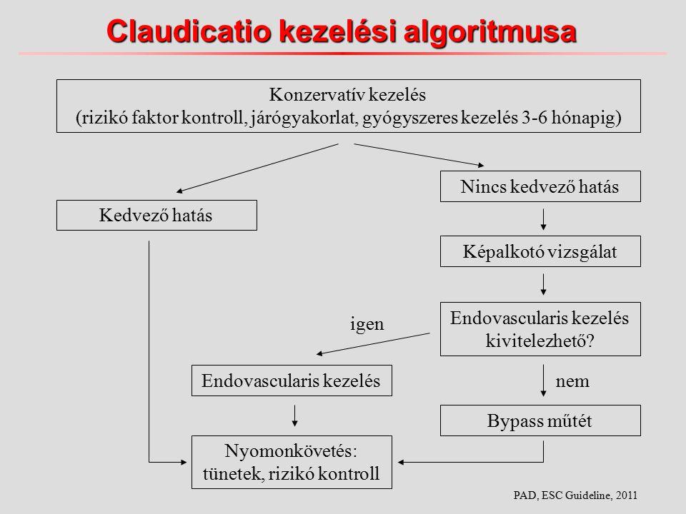 Claudicatio kezelési algoritmusa Konzervatív kezelés (rizikó faktor kontroll, járógyakorlat, gyógyszeres kezelés 3-6 hónapig) Kedvező hatás Nincs kedvező hatás Képalkotó vizsgálat Endovascularis kezelés kivitelezhető.