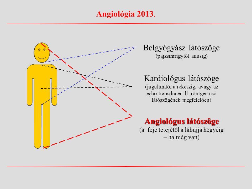 Belgyógyász látószöge (pajzsmirigytől anusig) Kardiológus látószöge (jugulumtól a rekeszig, avagy az echo transducer ill.