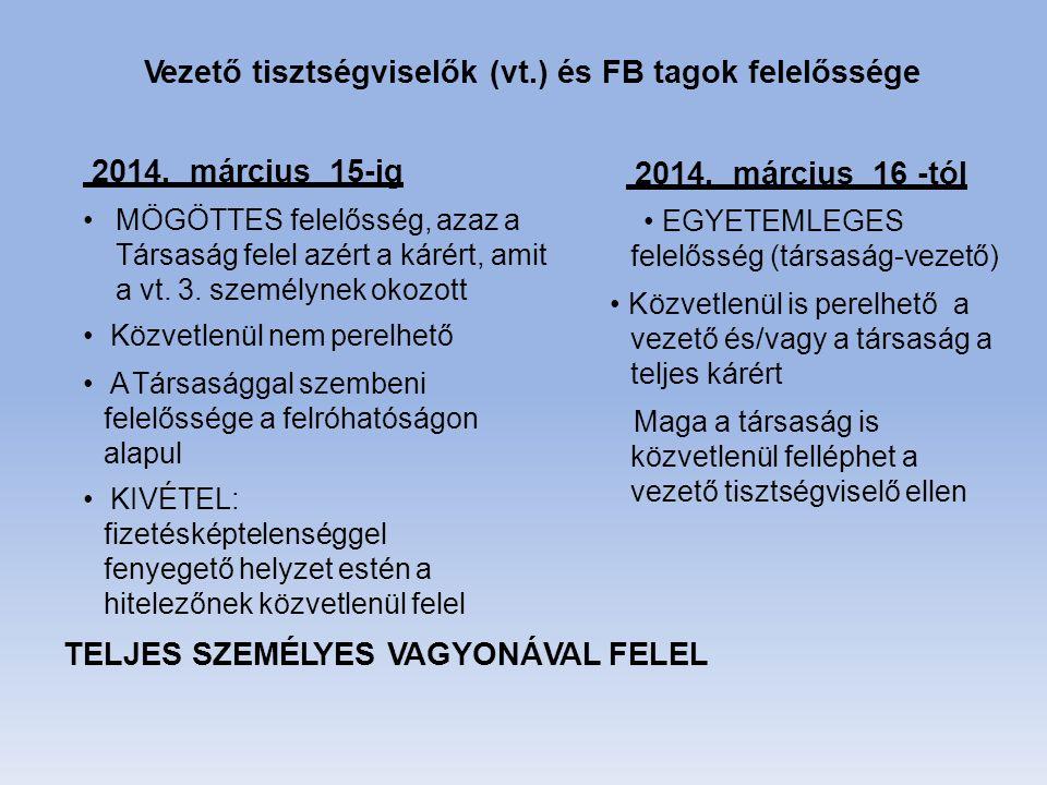 TELJES SZEMÉLYES VAGYONÁVAL FELEL 2014.