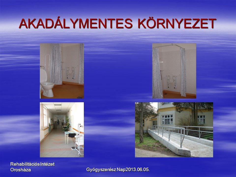 Rehabilitációs Intézet Orosháza AKADÁLYMENTES KÖRNYEZET Gyógyszerész Nap2013.06.05.
