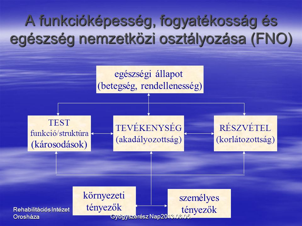 Rehabilitációs Intézet Orosháza A funkcióképesség, fogyatékosság és egészség nemzetközi osztályozása (FNO) TEST funkció/struktúra (károsodások) TEVÉKENYSÉG (akadályozottság) RÉSZVÉTEL (korlátozottság) környezeti tényezők személyes tényezők egészségi állapot (betegség, rendellenesség) Gyógyszerész Nap2013.06.05.