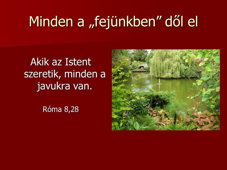 """Minden a """"fejünkben"""" dől el Akik az Istent szeretik, minden a javukra van. Róma 8,28"""