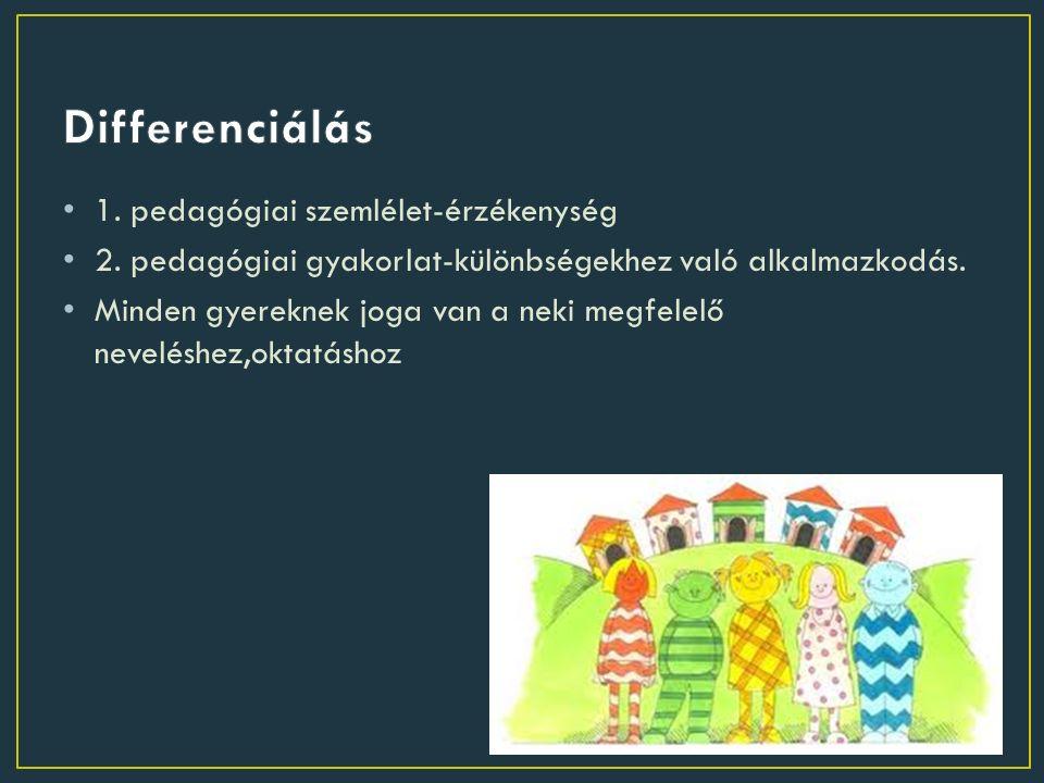 1. pedagógiai szemlélet-érzékenység 2. pedagógiai gyakorlat-különbségekhez való alkalmazkodás.