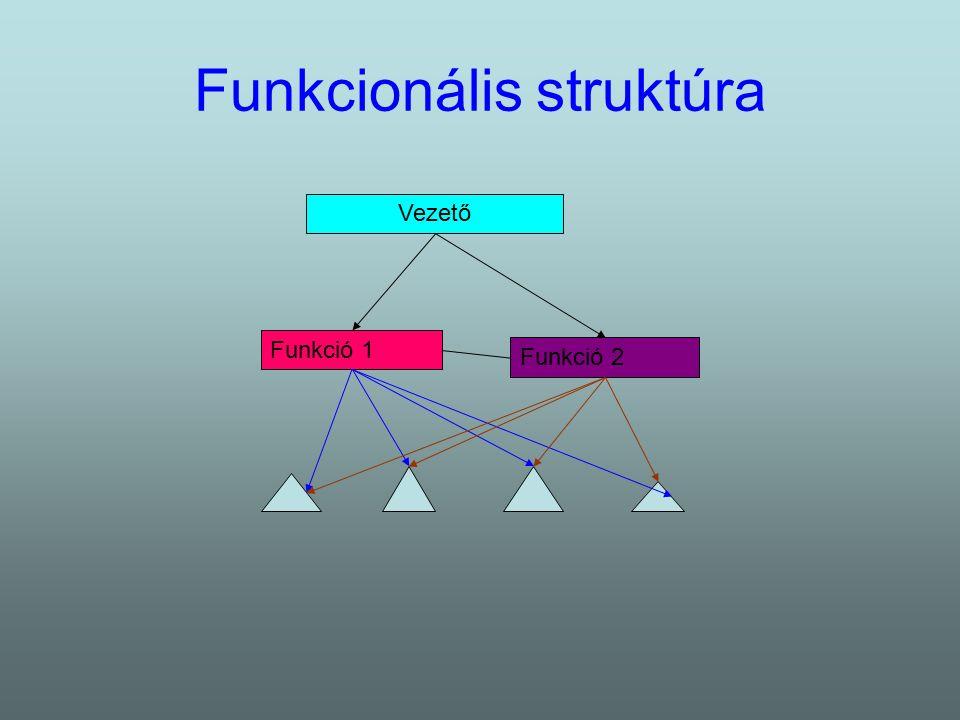 A funkcionális struktúra jellemzői Koordináció: 1.Erős vertikális kommunikáció 2.Technokratikus koordinácós eszközök 3.A horizontális koordinációt bizottságok, kommunikációs testületek segítik 4.Erőforrás koordináció Konfoguráció: 1.A funkciót ellátó egységek az alapegység fölé rendeltek 2.A tagozódás elve a két szinten eltérő