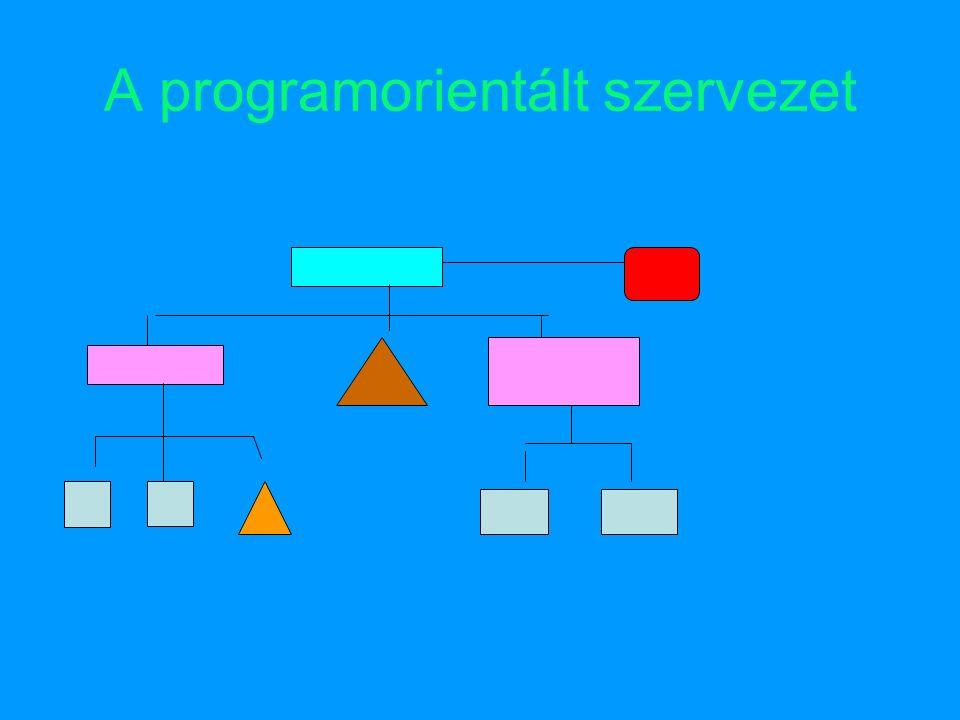 A programorientált szervezet