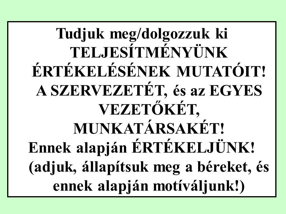 Divizionális szervezet V M,T,K D1D2D3 M,T,K Váll.TervezésVáll.Pénzügy Kut.-fejl.