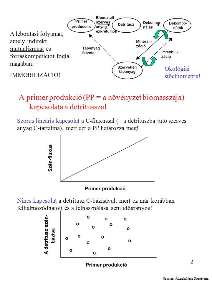 2 A primer produkció (PP = a növényzet biomasszája) kapcsolata a detritusszal Szoros lineáris kapcsolat a C-fluxussal (= a detrituszba jutó szerves anyag C-tartalma), mert azt a PP határozza meg.