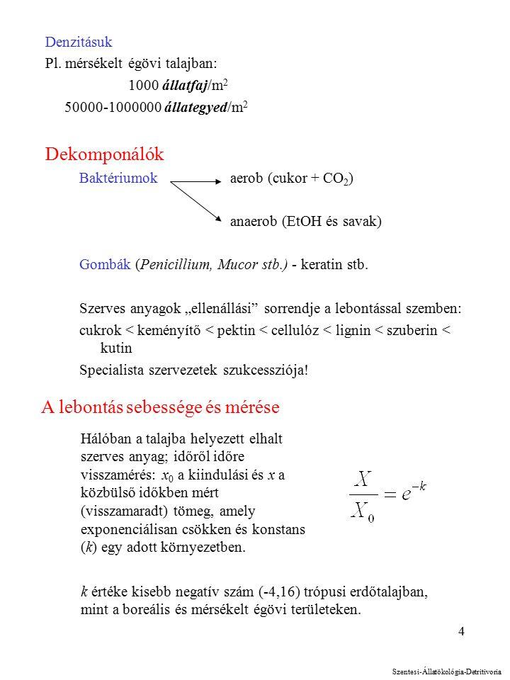 4 Denzitásuk Pl.