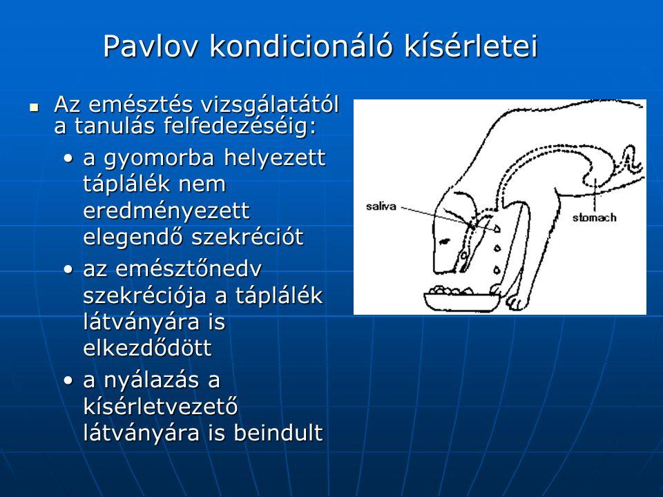 Pavlov kondicionáló kísérletei Az emésztés vizsgálatától a tanulás felfedezéséig: Az emésztés vizsgálatától a tanulás felfedezéséig: a gyomorba helyezett táplálék nem eredményezett elegendő szekrécióta gyomorba helyezett táplálék nem eredményezett elegendő szekréciót az emésztőnedv szekréciója a táplálék látványára is elkezdődöttaz emésztőnedv szekréciója a táplálék látványára is elkezdődött a nyálazás a kísérletvezető látványára is beindulta nyálazás a kísérletvezető látványára is beindult