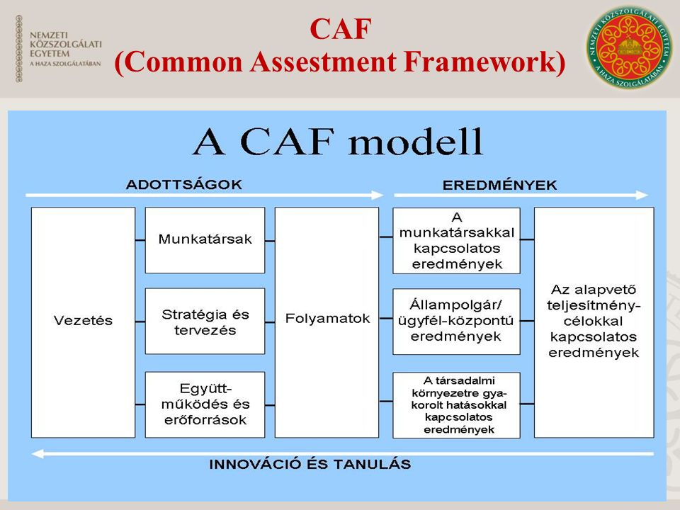 CAF (Common Assestment Framework)
