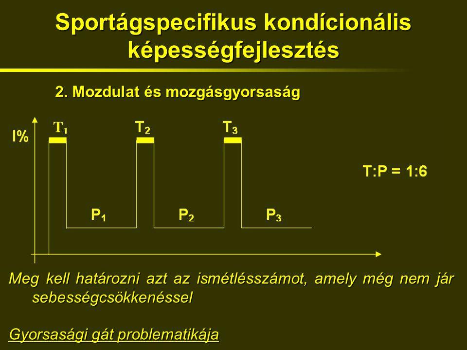 Sportágspecifikus kondícionális képességfejlesztés 2.