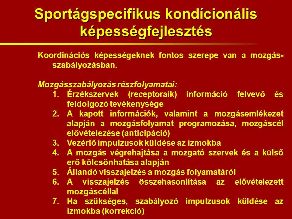 Sportágspecifikus kondícionális képességfejlesztés Koordinációs képességeknek fontos szerepe van a mozgás- szabályozásban.