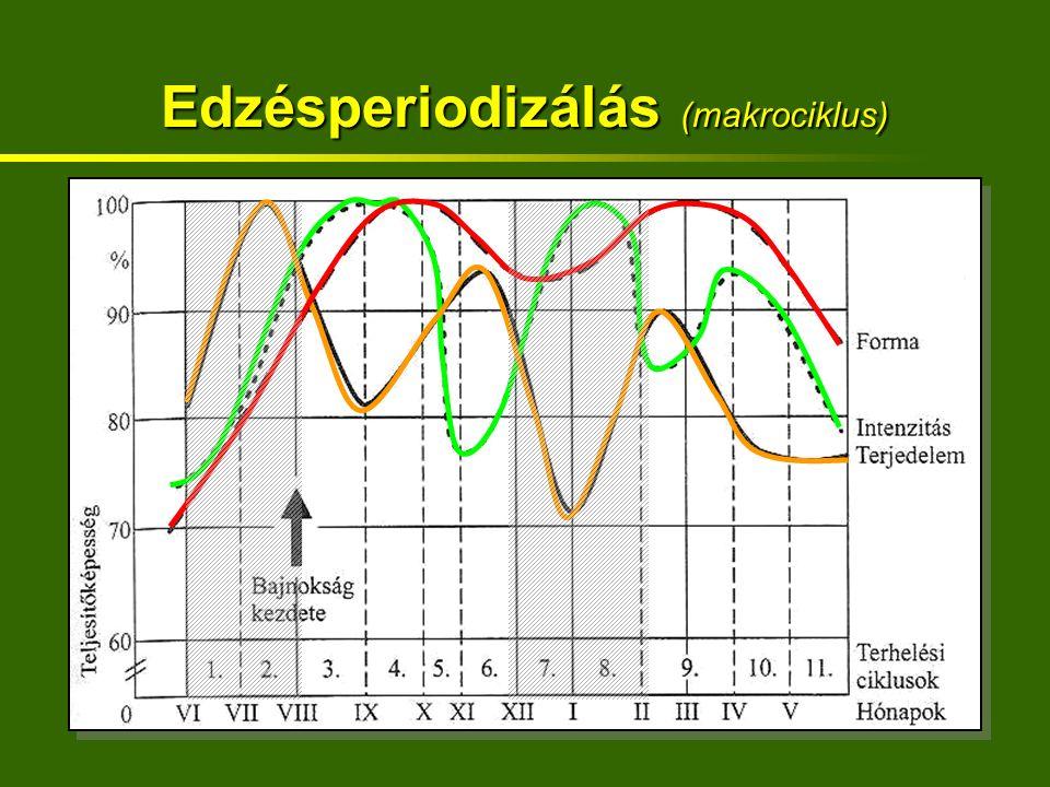 Edzésperiodizálás (makrociklus)