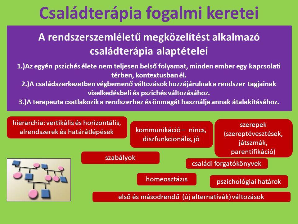 Családterápia fogalmi keretei A rendszerszemléletű megközelítést alkalmazó családterápia alaptételei 1.)Az egyén pszichés élete nem teljesen belső fol