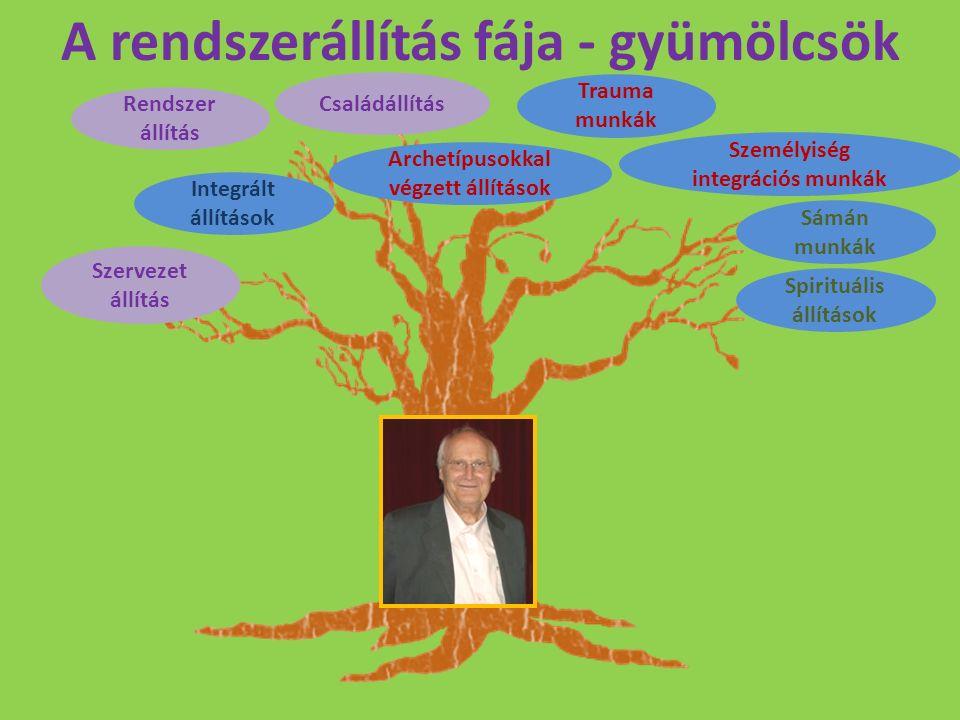 A rendszerállítás fája - gyümölcsök Szervezet állítás Integrált állítások Rendszer állítás Családállítás Archetípusokkal végzett állítások Trauma munk