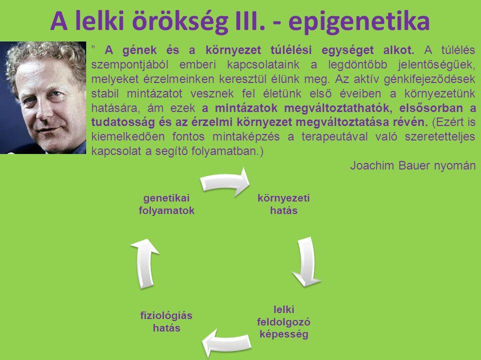 """A lelki örökség III. - epigenetika """" A gének és a környezet túlélési egységet alkot. A túlélés szempontjából emberi kapcsolataink a legdöntőbb jelentő"""