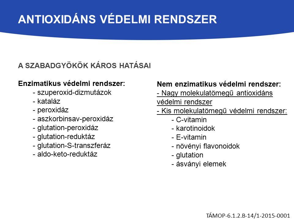 ANTIOXIDÁNS VÉDELMI RENDSZER A SZABADGYÖKÖK KÁROS HATÁSAI Enzimatikus védelmi rendszer: - szuperoxid-dizmutázok - kataláz - peroxidáz - aszkorbinsav-peroxidáz - glutation-peroxidáz - glutation-reduktáz - glutation-S-transzferáz - aldo-keto-reduktáz TÁMOP-6.1.2.B-14/1-2015-0001 Nem enzimatikus védelmi rendszer: - Nagy molekulatömegű antioxidáns védelmi rendszer - Kis molekulatömegű védelmi rendszer: - C-vitamin - karotinoidok - E-vitamin - növényi flavonoidok - glutation - ásványi elemek