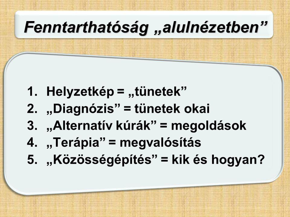 """Fenntarthatóság """"alulnézetben"""" 1.Helyzetkép = """"tünetek"""" 2.""""Diagnózis"""" = tünetek okai 3.""""Alternatív kúrák"""" = megoldások 4.""""Terápia"""" = megvalósítás 5.""""K"""