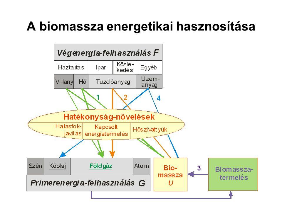 3.8. Biomassza-termelés, (energia)költségek