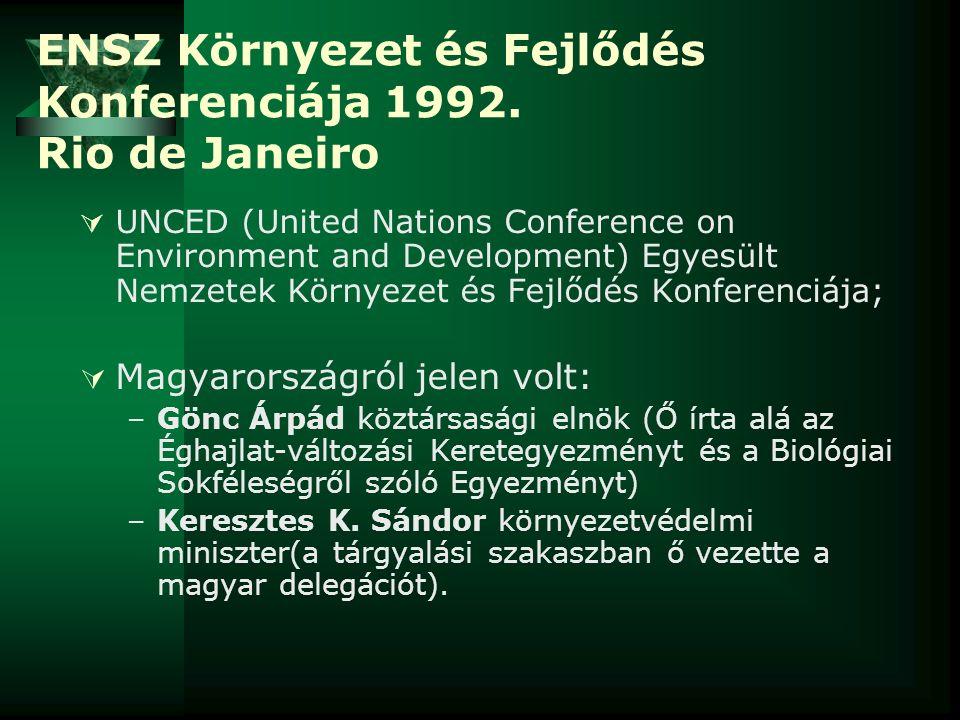 ENSZ Környezet és Fejlődés Konferenciája 1992. Rio de Janeiro  UNCED (United Nations Conference on Environment and Development) Egyesült Nemzetek Kör