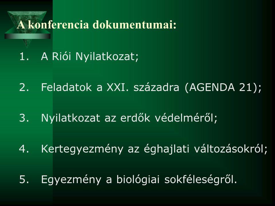 A konferencia dokumentumai: 1. A Riói Nyilatkozat; 2. Feladatok a XXI. századra (AGENDA 21); 3. Nyilatkozat az erdők védelméről; 4. Kertegyezmény az é