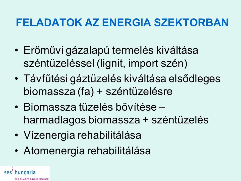 FELADATOK AZ ENERGIA SZEKTORBAN Erőművi gázalapú termelés kiváltása széntüzeléssel (lignit, import szén) Távfűtési gáztüzelés kiváltása elsődleges biomassza (fa) + széntüzelésre Biomassza tüzelés bővítése – harmadlagos biomassza + széntüzelés Vízenergia rehabilitálása Atomenergia rehabilitálása
