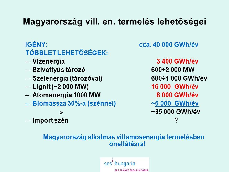 Magyarország vill. en. termelés lehetőségei IGÉNY: cca. 40 000 GWh/év TÖBBLET LEHETŐSÉGEK: –Vízenergia 3 400 GWh/év –Szivattyús tározó 600÷2 000 MW –S