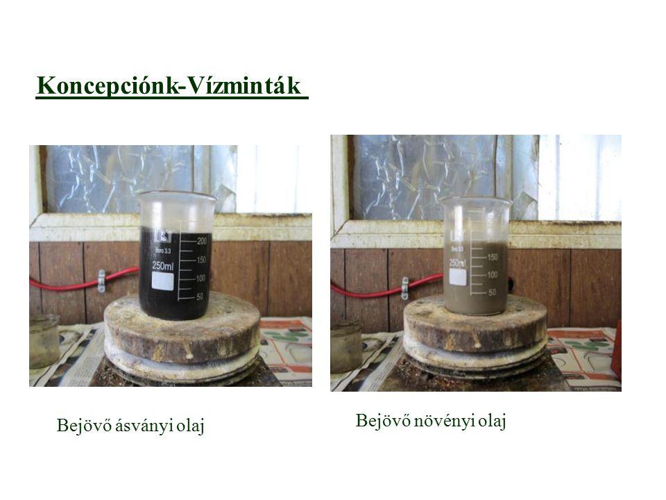 Vízminták -Koncepciónk aaaa Bejövő ásványi olaj Bejövő növényi olaj