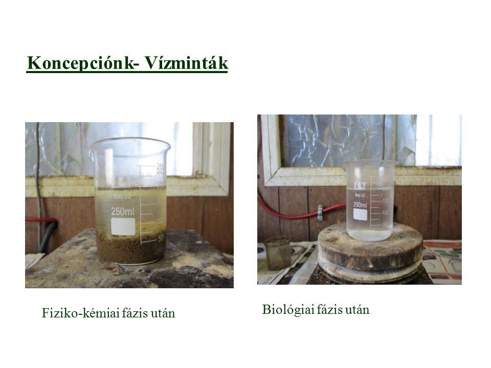 Vízminták-Koncepciónk Fiziko-kémiai fázis után Biológiai fázis után
