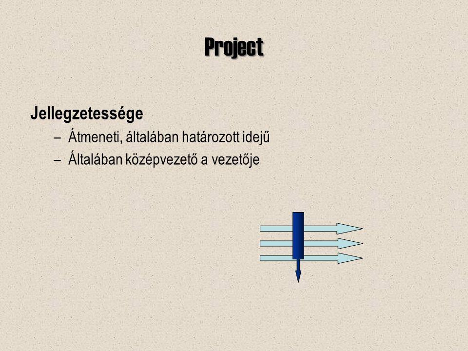Project Jellegzetessége –Átmeneti, általában határozott idejű –Általában középvezető a vezetője