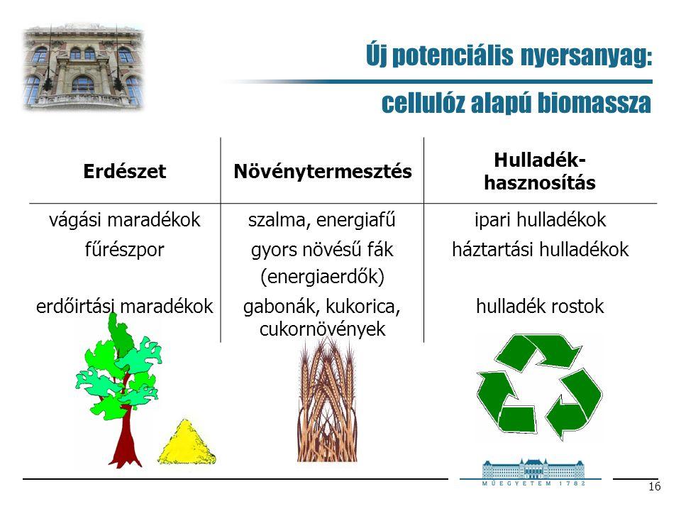 16 Új potenciális nyersanyag: cellulóz alapú biomassza ErdészetNövénytermesztés Hulladék- hasznosítás vágási maradékokszalma, energiafűipari hulladékok fűrészporgyors növésű fák (energiaerdők) háztartási hulladékok erdőirtási maradékokgabonák, kukorica, cukornövények hulladék rostok
