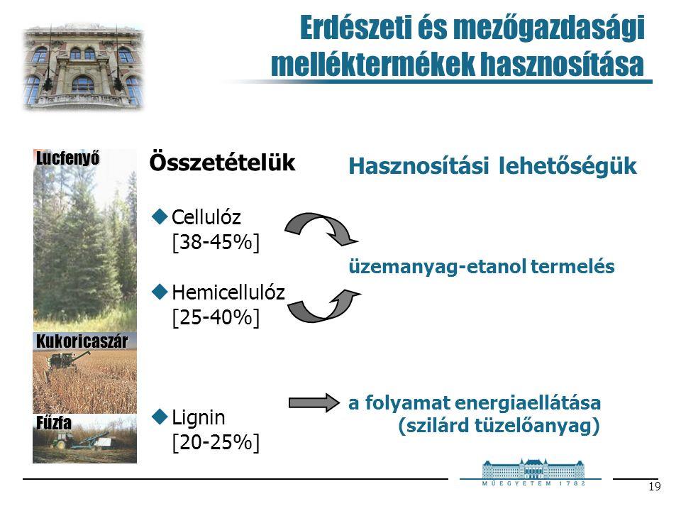 19 Erdészeti és mezőgazdasági melléktermékek hasznosítása Hasznosítási lehetőségük a folyamat energiaellátása (szilárd tüzelőanyag) üzemanyag-etanol termelés Összetételük  Cellulóz [38-45%]  Hemicellulóz [25-40%]  Lignin [20-25%] Lucfenyő Kukoricaszár Fűzfa