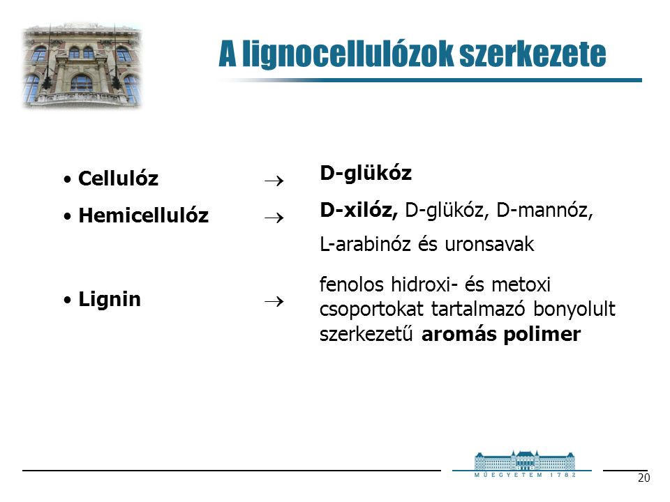 20 A lignocellulózok szerkezete Cellulóz  Hemicellulóz  Lignin  D-glükóz D-xilóz, D-glükóz, D-mannóz, L-arabinóz és uronsavak fenolos hidroxi- és m