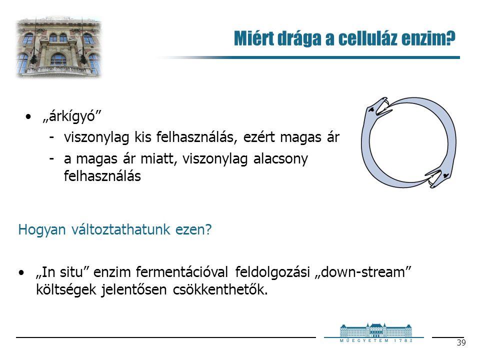 """39 Miért drága a celluláz enzim? Hogyan változtathatunk ezen? """"In situ"""" enzim fermentációval feldolgozási """"down-stream"""" költségek jelentősen csökkenth"""