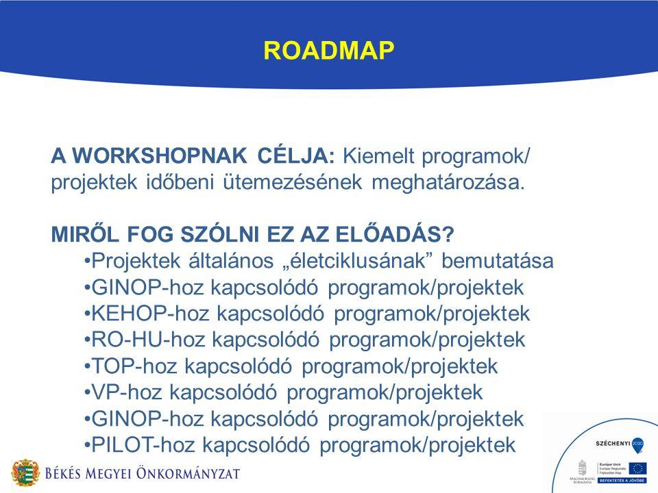 ROADMAP A WORKSHOPNAK CÉLJA: Kiemelt programok/ projektek időbeni ütemezésének meghatározása.