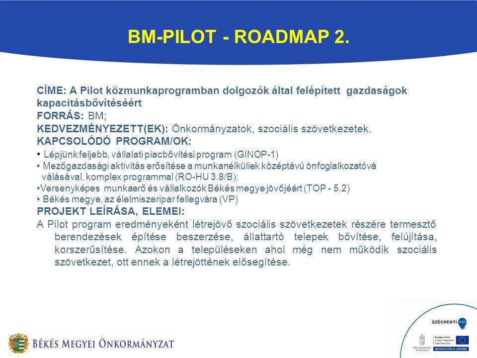 BM-PILOT - ROADMAP 2.