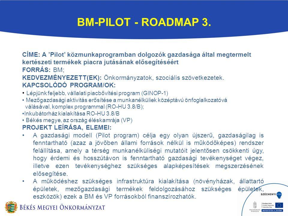 BM-PILOT - ROADMAP 3.