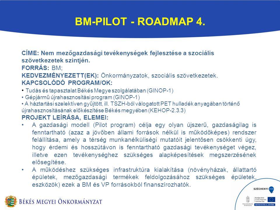 BM-PILOT - ROADMAP 4.